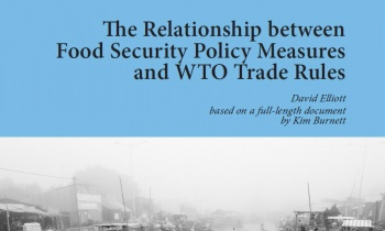 Policy Brief: The relationship between food security ...